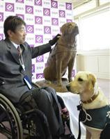 3月に設置されるシンシアの銅像をなでる木村佳友さん=宝塚市役所