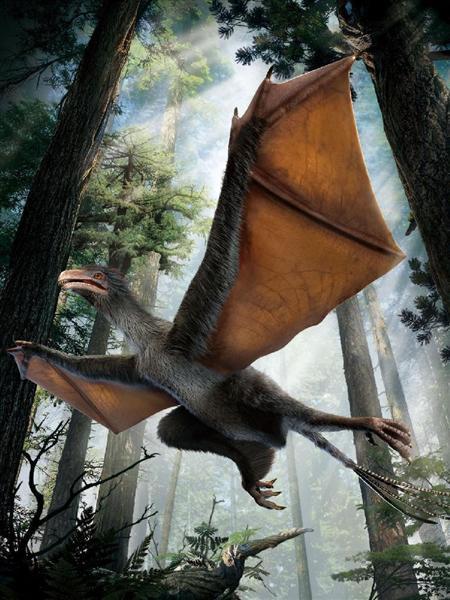 [古鳥類]鳥類と恐竜の関係について語ろう2[新鳥類]YouTube動画>5本 ニコニコ動画>1本 ->画像>76枚