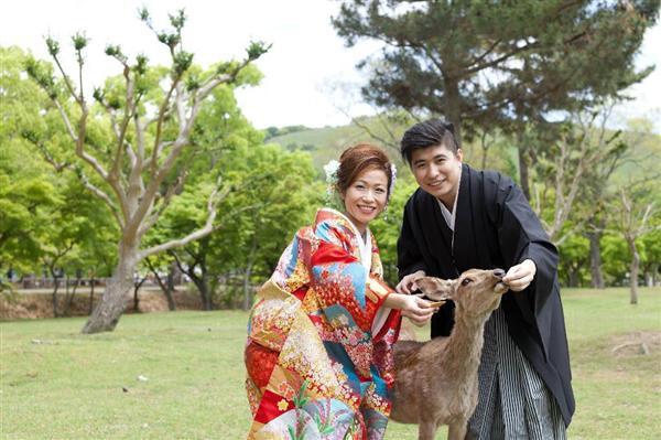 奈良市内で着物レンタルなどを行う企業「着物あそびにっこり」によると、観光シーズンの利用客の9割は外国人で、「正直、中国人がいないと店は成り立たない」と明かす。(奈良公園で鹿とともにフォトウエディングを楽しむカップル=渡辺写真館提供)
