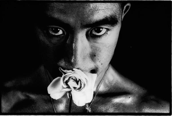 三島 由紀夫 薔薇