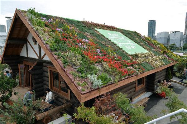〝花壇〟がリニューアルされた「花咲く丸太小屋」の屋根=大阪市北区のうめきたガーデン(南雲都撮影)