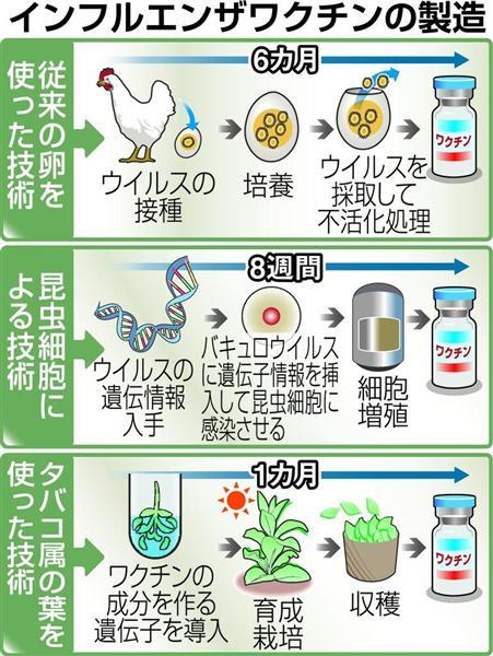 ワクチン インフルエンザ