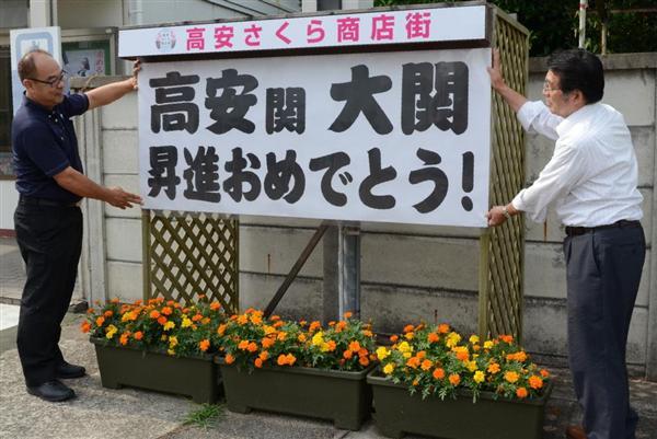 新大関・高安関のルーツは大阪・...