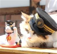 「たま招き猫」とツーショットのニタマ駅長=紀の川市