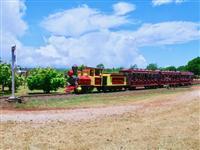 【江藤詩文の世界鉄道旅】パイナップルエクスプレス(1) ハワイ文化のルーツを伝える パ…