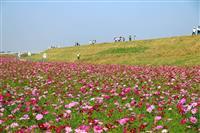 【告知】熊本復興支援 九州ウオーキングの旅