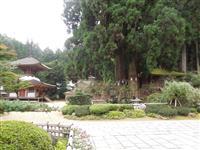 【日本再発見 たびを楽しむ】高野山・金剛三昧院(和歌山) 国宝・重文と「すてきな出会い…