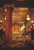 【告知】ウィーン・フィル「ニューイヤーコンサート」を現地で鑑賞 特別ツアーを開催