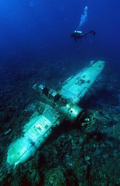 南洋に沈み、サンゴに翼を覆われた零式水上偵察機=平成26年12月14日、パラオ・アラカベサン島沖(松本健吾撮影)