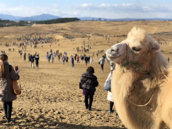 http://www.sankei.com/images/news/171124/lif1711240032-p1.jpg