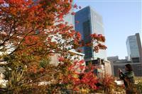 【うめきたガーデン】大阪の都心も紅葉鮮やか ビル群バックにパチリ