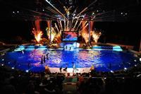 イルミネーションに彩られたイルカのショーなどを楽しめる「ウインターナイト」(アドベンチャーワールド提供)