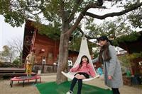 【阪神大震災】遺児施設「浜風の家」23日閉館 藤本義一さん提案の「希望の木」も伐採へ