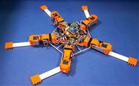 【びっくりサイエンス】5本腕のクモヒトデ型ロボット登場 想定外にも対処、東北大など開発