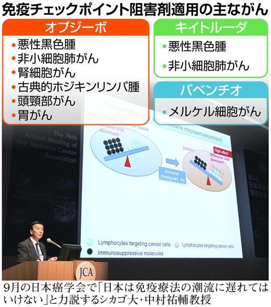 株価 ナノ 掲示板 キャリア