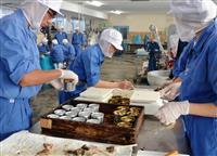 磯焼け原因のアイゴ、缶詰に 長崎鶴洋高、食害魚の漁獲促す