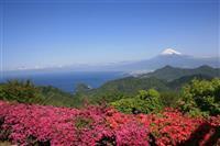 【日本再発見 たびを楽しむ】富士&駿河湾一望 グルメも充実~伊豆の国パノラマパーク(静…