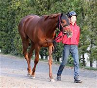 【競馬】ラッキーライラックは〔1〕枠(1)番 3歳牝馬クラシック桜花賞の枠順確定