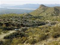 「空気から水をつくる」パネルで飲料水はできるのか? 砂漠にもち込んで、ひと晩を過ごして…