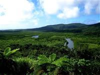【潜伏キリシタン 世界遺産へ】「登録延期」の奄美・沖縄「チャンスある」 環境省