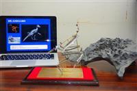 鳥類化石、CTで復元 福井県立大学研究所が画像・模型化 7月から特別展で公開
