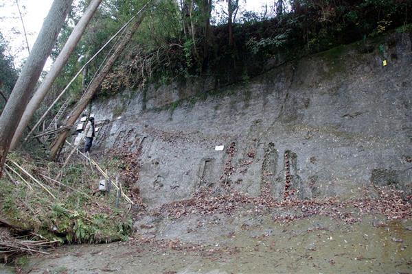 場所 チバニアン 国指定天然記念物「養老川流域田淵の地磁気逆転地層」仮設ガイダンス施設 チバニアンビジターセンター
