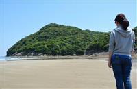 サルの島、再び陸続きに 宮崎・幸島、観光客とのトラブル懸念