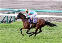 【競馬】アーモンドアイが1番人気 オークスの前日発売オッズ