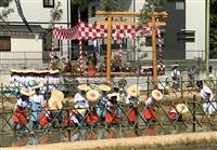 自然の恵み祈る 下関・住吉神社で御田植祭