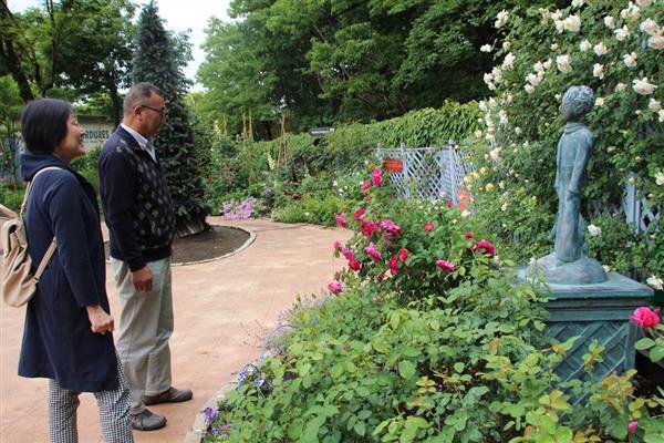 バラ園内の王子さま像を眺める来場者=埼玉県深谷市本郷北坂