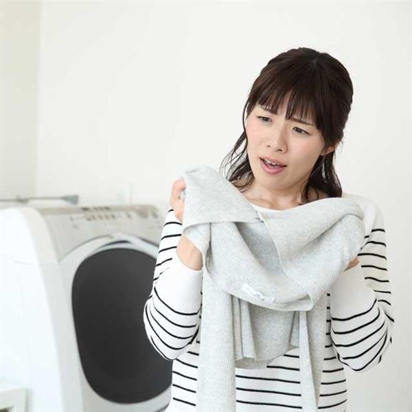 鳥 フン の 物 洗濯