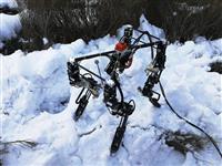 進化しながら「歩行」を学ぶ四脚ロボット「Dyret」 オスロ大研究者らが開発