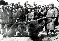ランニング大会でヒグマ警戒 106年ぶり上陸恐れの北海道・利尻島
