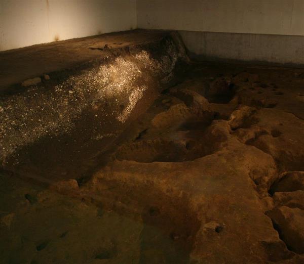 竪穴式住居跡や貝塚の地層がそのまま展示され、来場者がみることも可能だ=千葉市若葉区(永田岳彦撮影)
