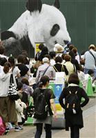 【動画】シャンシャン1歳に 上野動物園は記念品を配布