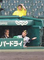 【虎のソナタ】阪神ファンはつらいよ…一喜一憂の人生、ストレスでゴリラ部長ぎっくり腰に!…