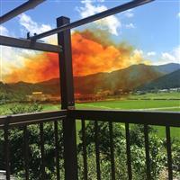 迫るオレンジ色の煙 医薬品原料製造工場で爆発、1人死亡