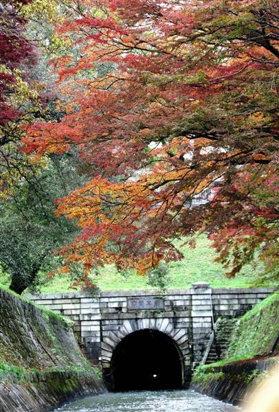 琵琶湖疏水の沿線は春には桜、秋には紅葉が楽しめる観光名所でもある=京都市山科区