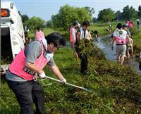 「市民のオアシス守る」 テレビ熊本社員らが江津湖清掃