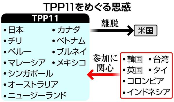 「TPP11」の画像検索結果