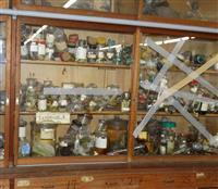 【大阪北部地震】被害を受けた生き物標本などを搬出へ…50年前の高校生らが採集した「貴重…