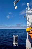 【クローズアップ科学】日本海で進む「海の温暖化」 異変が世界に先行、漁業に打撃懸念