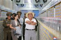 【激動・朝鮮半島】なぜ塩辛や納豆工場にナマズ養殖所 正恩氏の視察に込めた狙い