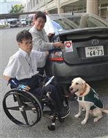 「補助犬」を公用車で啓発 宝塚市、240台にシール