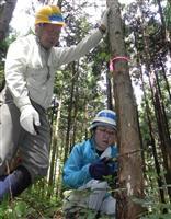 岩手・紫波町で国学院大の学生ら間伐体験 今年で15回、循環型社会へ連携