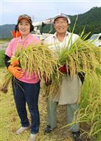 香住のブランド米「かにのほほえみ」 豊作に笑顔、収穫始まる