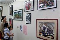 豊岡で坂田陽一さん個展 但馬名所を剪画で表現