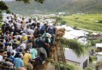 奄美で五穀豊穣祈願、伝統の「新節行事」行う