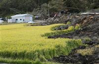 【北海道震度7地震】農林水産の被害397億円 林が崩壊、停電で生乳廃棄も