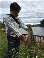 倒木、枝折れ…台風21号の爪痕今も 紅葉の名所にも影響